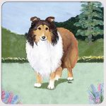 Sheltie Yard Scene Coasters Set of 4