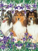 Sheltie Garden Flag 12.5 x 18 in