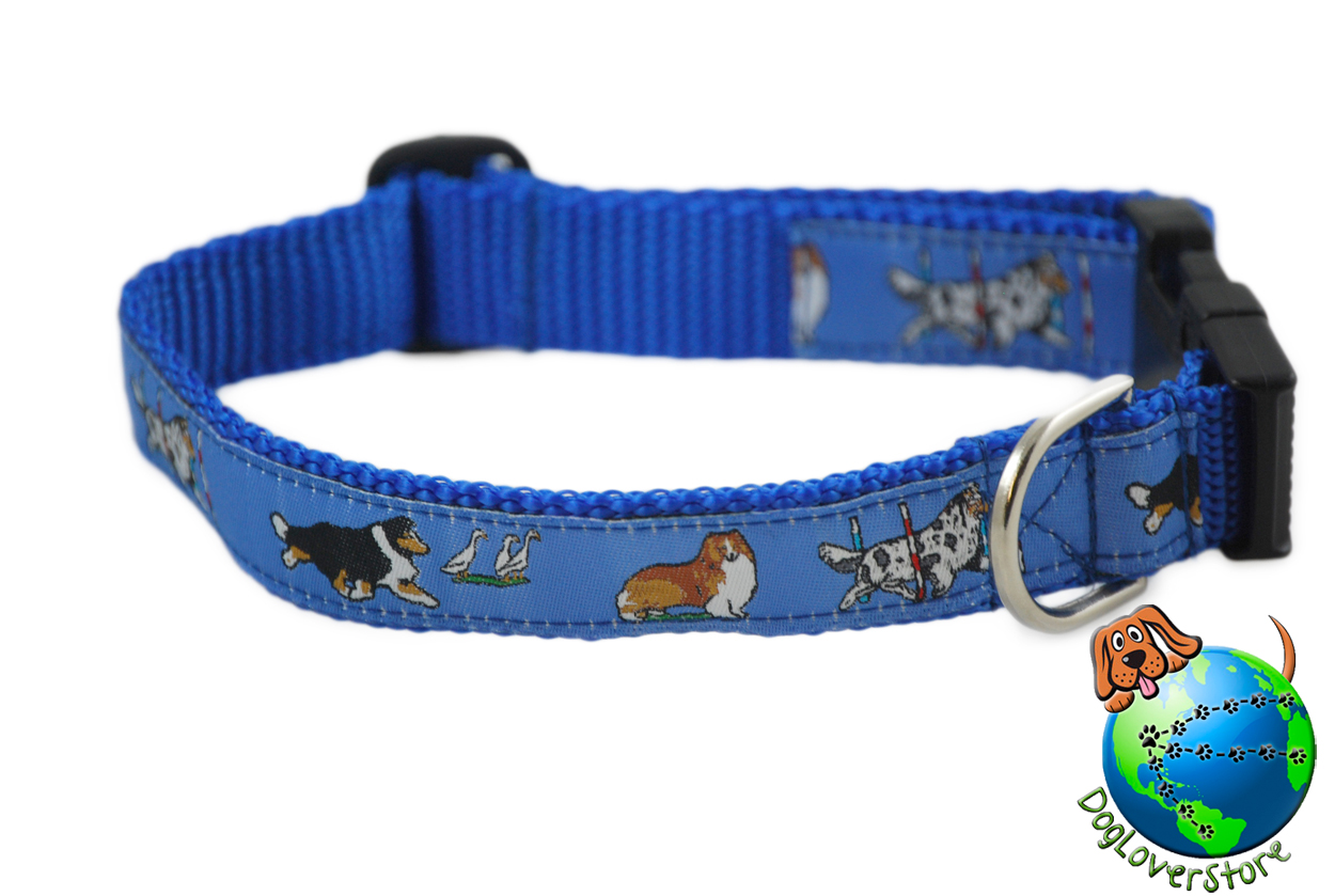 "Sheltie Dog Breed Adjustable Nylon Collar Medium 10-16"" Blue"