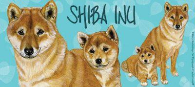 Shiba Inu Mug Illustration