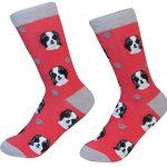 shih-tzu-socks-black-puppy-es