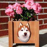Siberian Husky Planter Flower Pot Red White 1