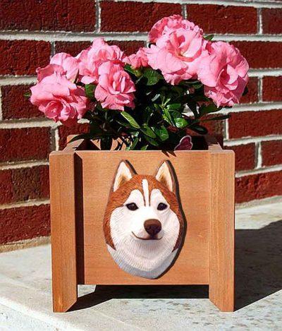 Siberian Husky Planter Flower Pot Red White