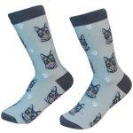 silver-tabby-cat-socks-es