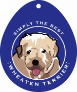 Soft Coated Wheaten Terrier Sticker 4x4""