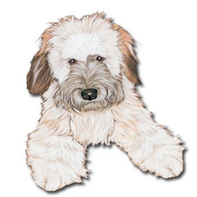 soft-coated-wheaten-wood-magnet