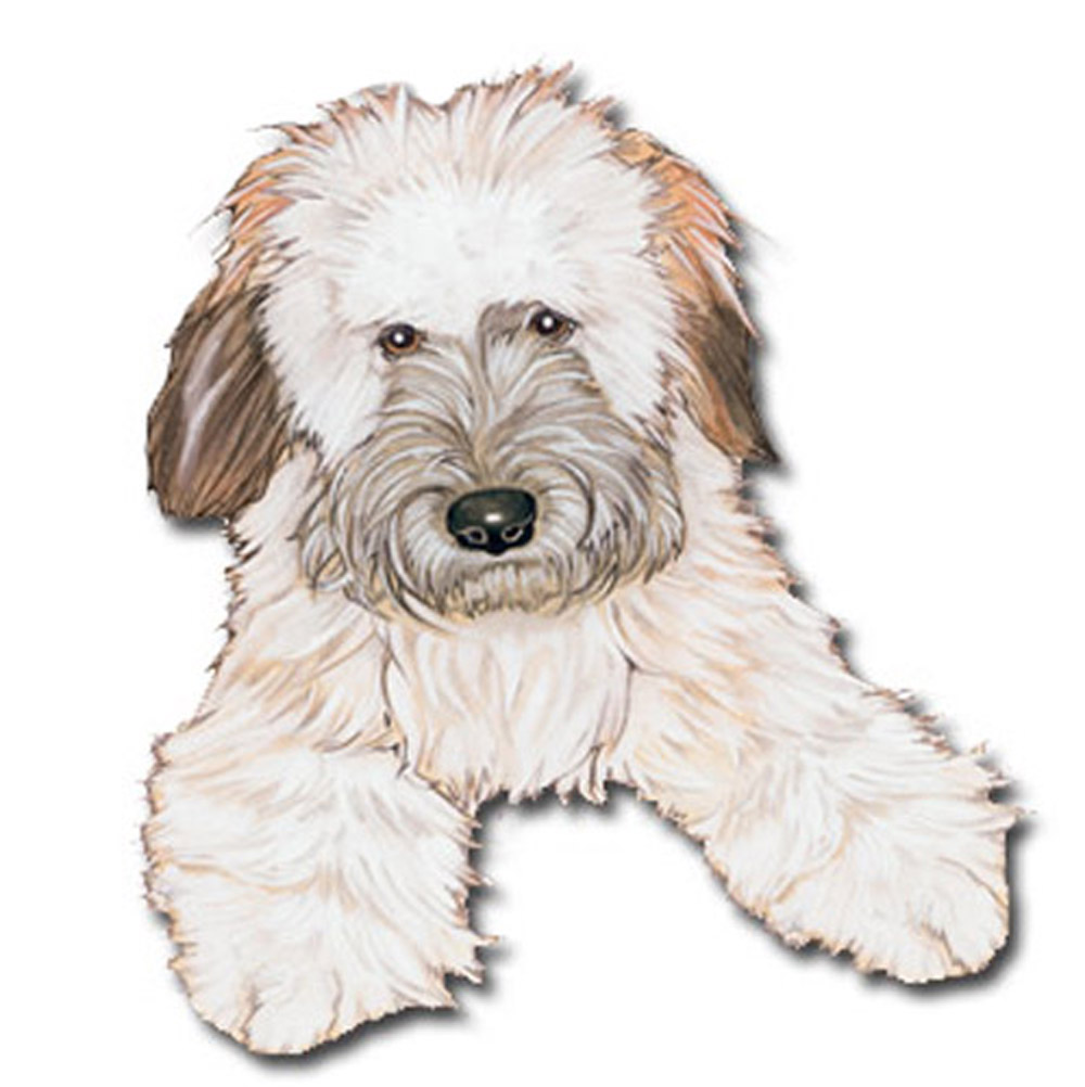 Soft Coated Wheaten Wooden Magnet