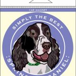 Springer Spaniel Car Magnet 4×4″ 1