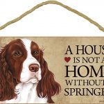 Springer Spaniel Wood Dog Sign Wall Plaque 5 x 10 + Bonus Coaster 1