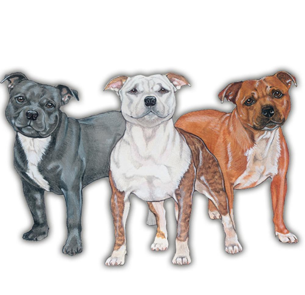 Staffordshire Bull Terrier Wooden Magnet