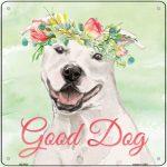 "Staffordshire Bull Terrier ""Good Dog"" Metal Sign White"