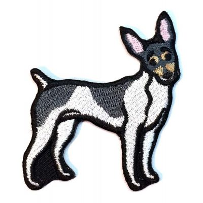 toy-fox-terrier-iron-on-embroidered-patch
