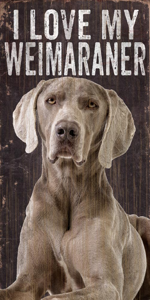 Weimaraner Sign - I Love My 5x10