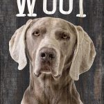 Weimaraner Sign – You Had me at WOOF 5×10 1