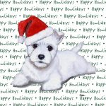 Westie Dog Coasters Christmas Themed