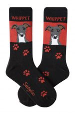 Whippet Gray Socks on Red Background