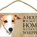 Whippet Wood Dog Sign Wall Plaque Photo Display 5 x 10 – House Is Not A Home + Bonus Coaster 1