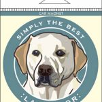 Yellow Labrador Car Magnet 4×4″ 1