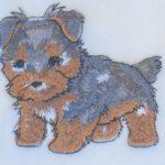 Yorkie Scarf Cream Fleece Puppy Cut 2