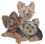 Yorkie Wooden Magnet Puppy Cut